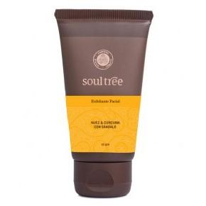 EXFOLIANTE ADYURVEDICO 25 GRS- Soultree